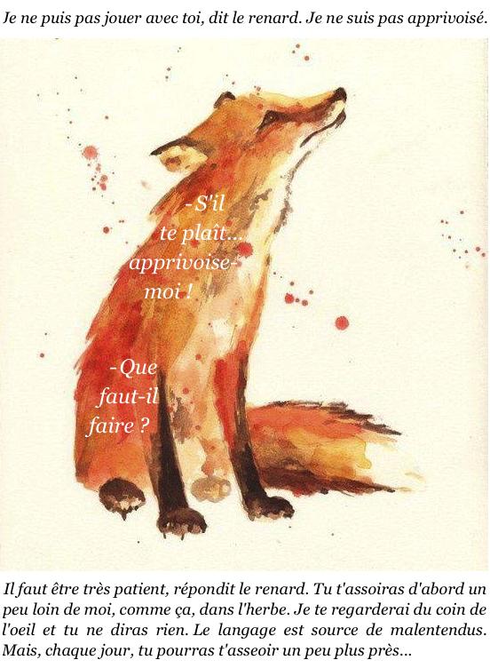 le renard le petit prince
