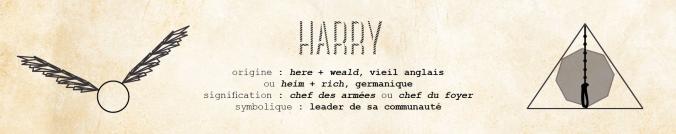 harry potter marque-page bookmark allez vous faire lire