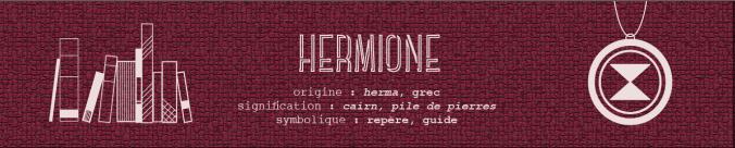 hermione granger harry potter marque-page bookmark allez vous faire lire
