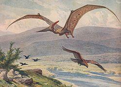 pterosaures archosaures